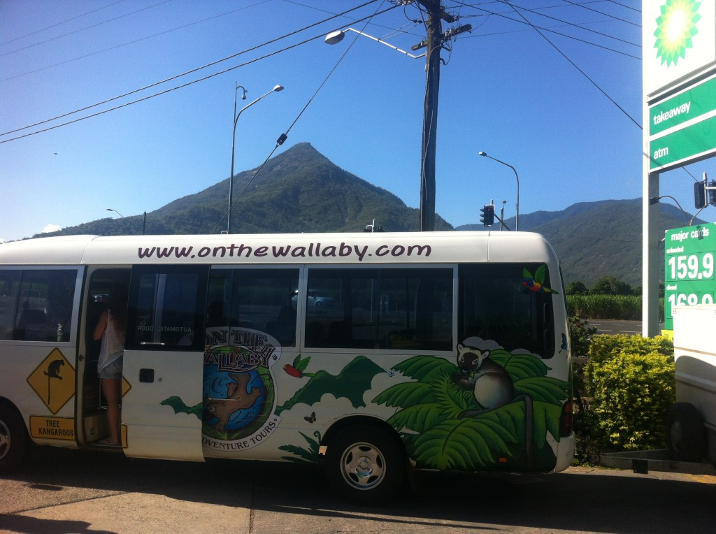 On The Wallaby Tour Bus in Queensland, Australia