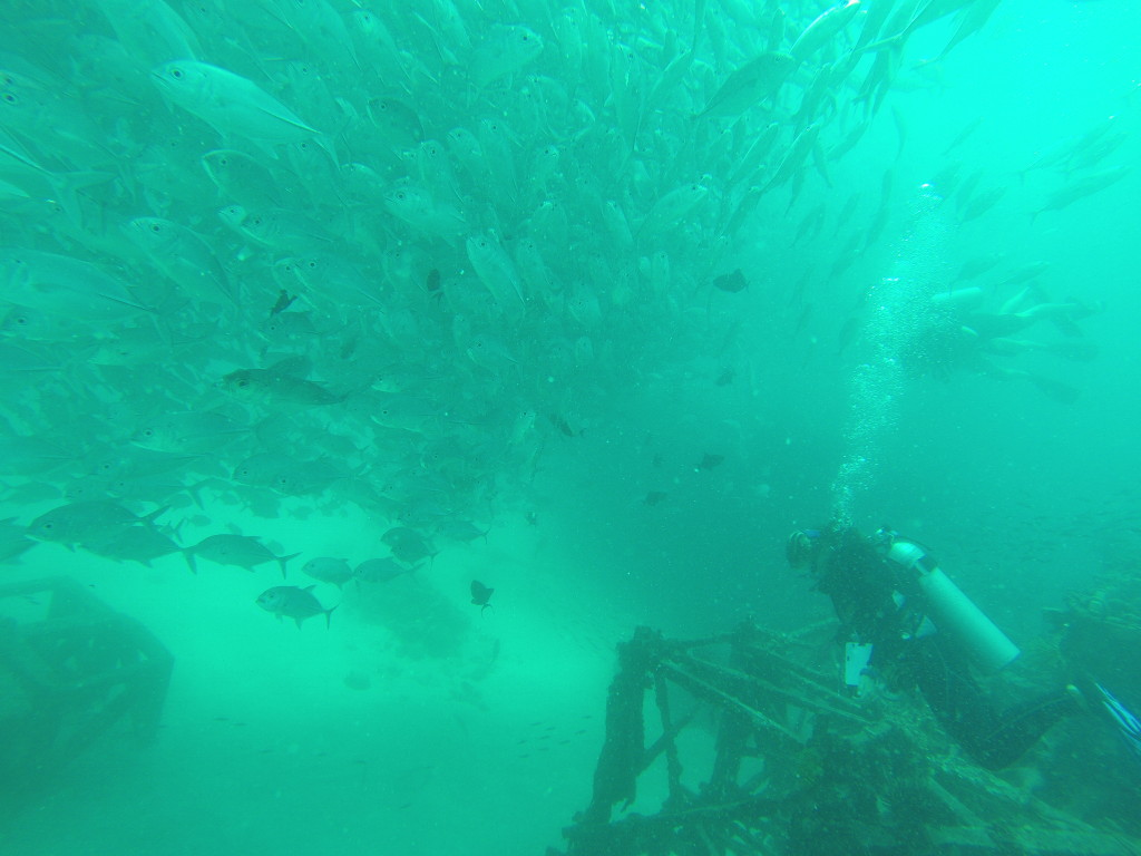 Scuba Diving off Mabul Island in Malaysia